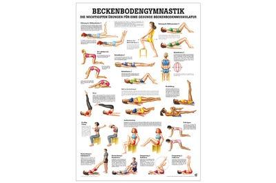 Lehrtafel Beckenbodengymnastik